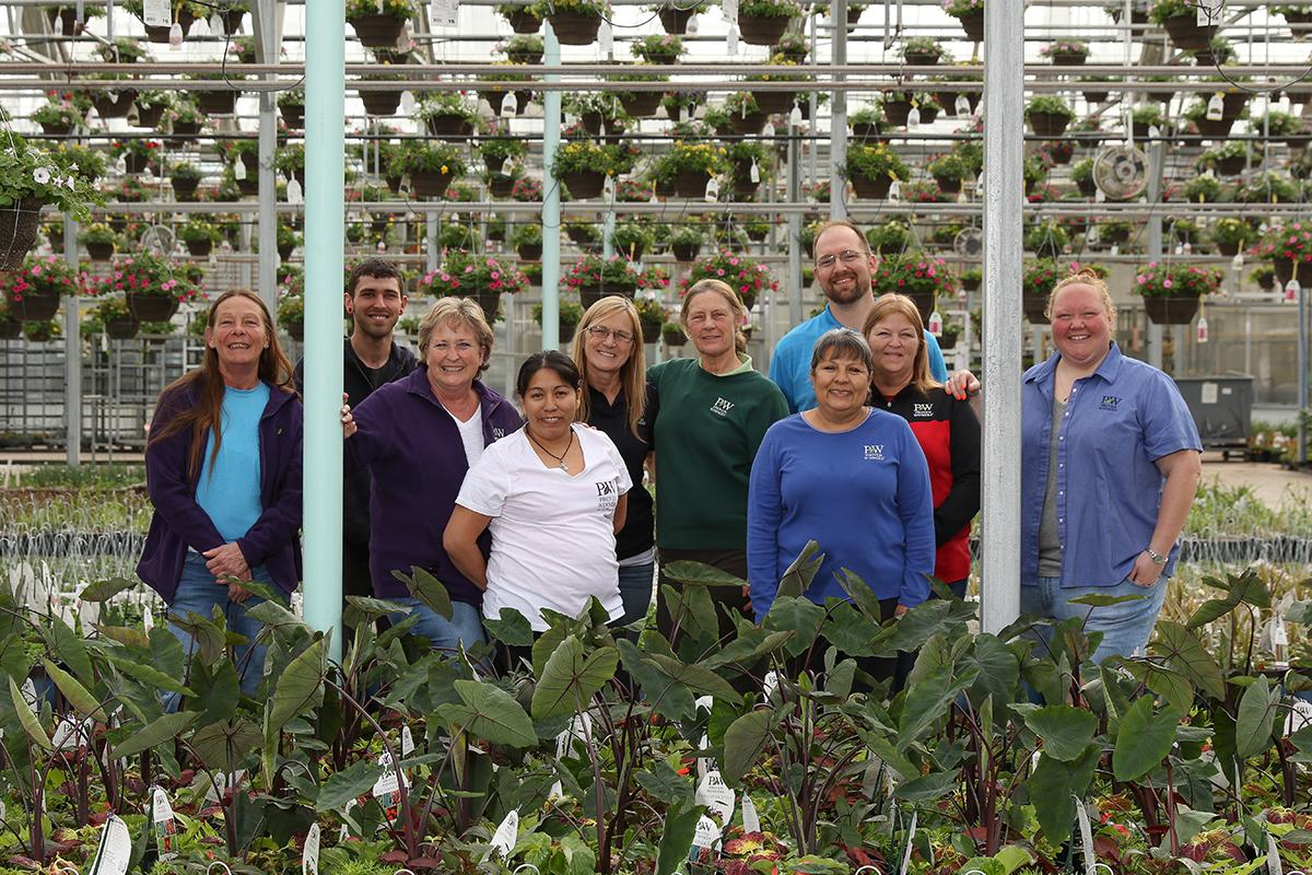 Plantas nativa LLC - Hogar - Vivero Nativo
