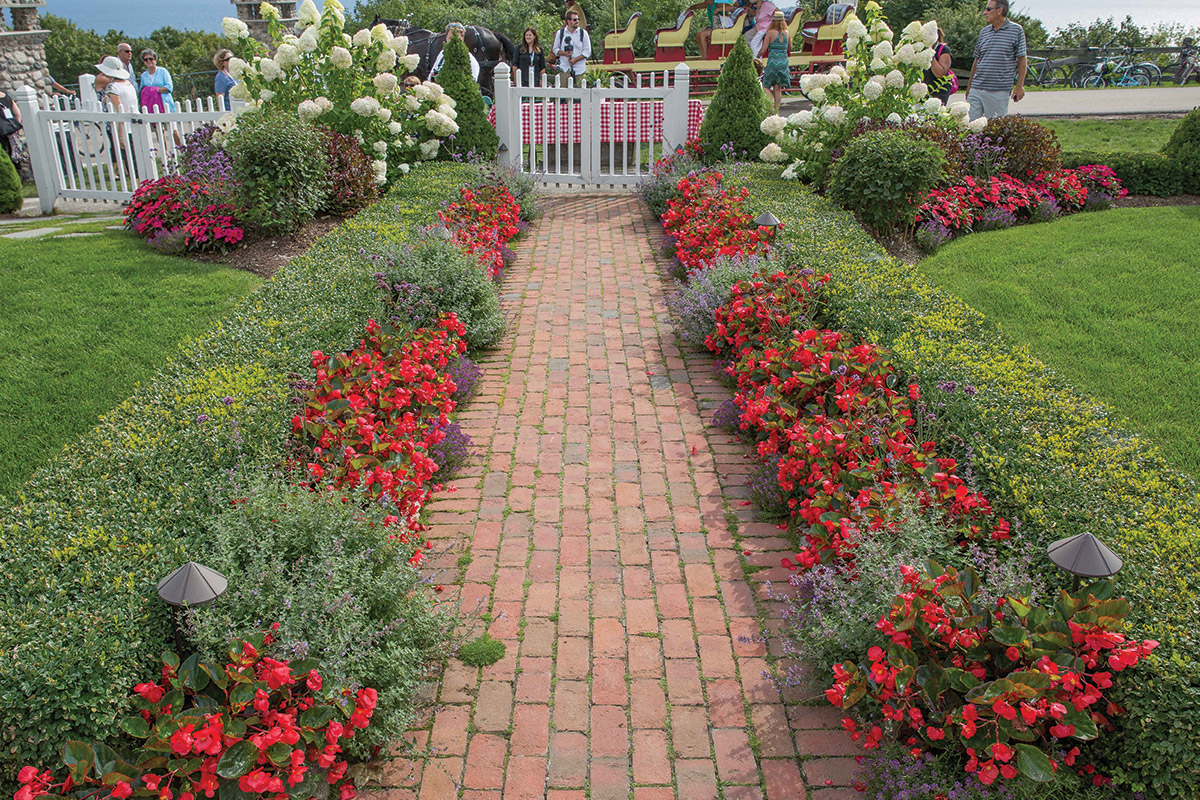 Landscape Design Ideas Part - 16: Surefire® Red Begonia With Dark Knight™ Lobularia And Meteor Shower®  Verbena And U0027