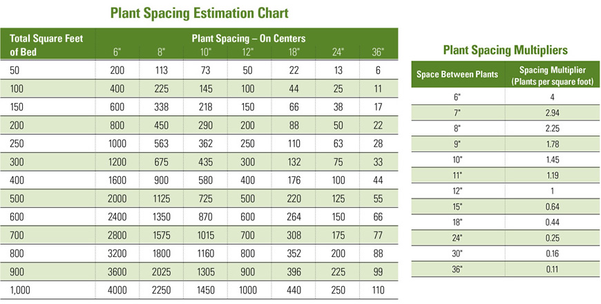 Calculate plant spacing four star greenhouse - Spacing planting vegetables guide ...